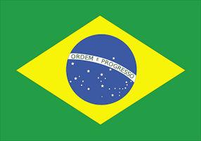 brasilien-flagge